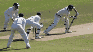 cricketers playing a match